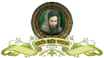 Emir-Yunis.jpg
