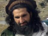 Sajna-Mehsud
